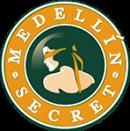 Medellin logo